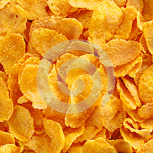 Close up view of corn flake cereal