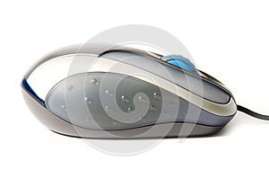 Technology: isolated mouse over white background