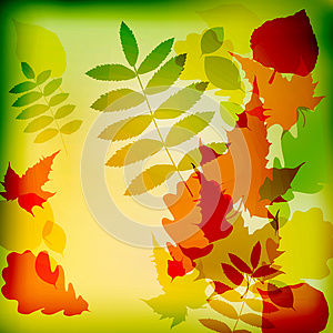 Abstract cute autumnal background