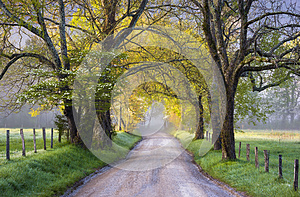 Cades Cove Great Smoky Mountains National Park Scenic Landscape Spring