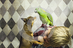 Boy with small dog and parrot