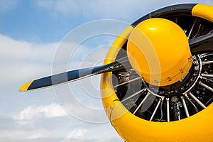 Nose and propeller of T-6 Airplane WarBird