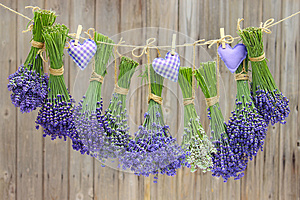 Love hearts and lavender