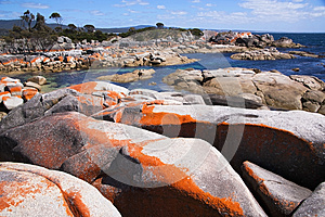 Bay of fires scenics