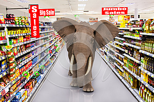Big supermarket sales elephant