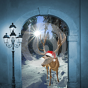 Reindeer in winter wonderland, christmas design