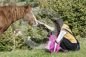 Young woman stroking a beautiful red wild horse