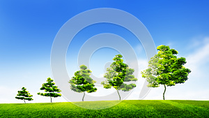 Sustainable growth. Successful development in business. Green technologies.