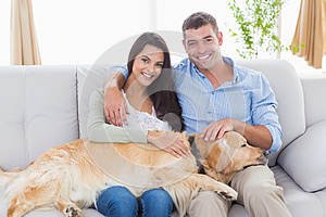 Happy couple stroking dog while sitting on sofa