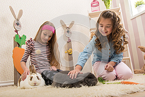 Easter - Little girls stroking the rabbits, hand beets