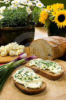 Slice of bread spread with sheep cheese