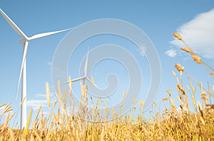 Windmill Grassland Field Hill Natural Scenics Concept