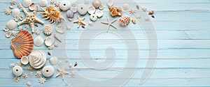 Summer Shells Blue Wood Banner Background