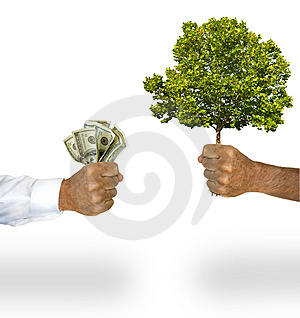Money for tree