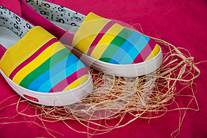 Fashionable, bright, easy sports shoes (gym shoes)