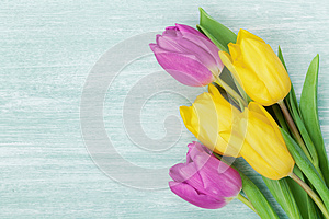 Tulip flowers on rustic table for March 8, International Womens day, Birthday or Mothers day, beautiful spring card