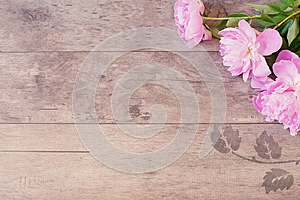 Floral frame with pink peonies on wooden background. Styled marketing photography. Copy space. Wedding, gift card