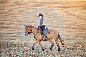 Portrait of equine sportswoman jumping on a hors