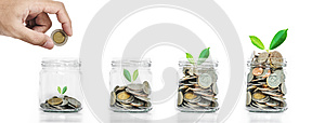 Money savings, hand put coins in piggy bank with plants glowing