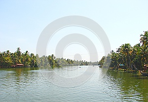 Backwaters in Kerala captured from Houseboat, India