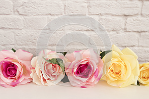 Pink Rose Mock Up. Styled Stock Photography. Floral Frame, Styled Wall Mock Up. Rose Flower Mockup, Valentine Mothers Day Card, Gi