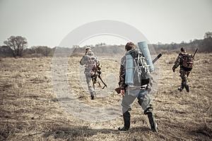 Hunting scene with group of hunters with backpacks and hunting ammunition going through rural field during hunting season in overc