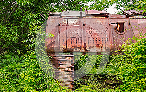 Old railway wagon captured by vegetation.