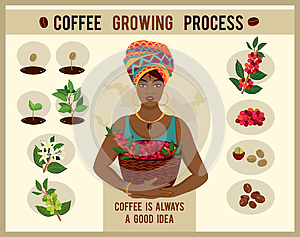 African woman is a coffee farmer with a basket of coffee berries on the coffee farm.