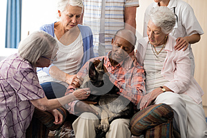 Senior people with doctor stroking dog while sitting on couch