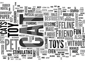 Become Your Feline Friend S Best Buddy With A Great Cat Pet Toy Word Cloud