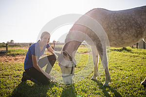 Portrait of smiling jockey stroking horse at barn