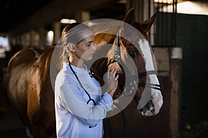 Confident female vet stroking horse