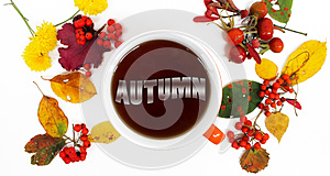 Autumn background. Colorful leaves, the word `autumn` in tea and redberries.
