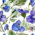 Wildflower Orchid Flower Pattern In A Watercolor Style. Royalty Free Stock Photo - 100138915