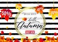 Vector Illustration Of Fashion Autumn Sale Poster Royalty Free Stock Image - 100358366
