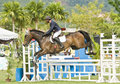 Equestrian Show Jumping Stock Photography - 10057732
