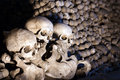 Heap Of Bones And Skulls Stock Photography - 10071672