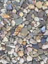River Pebble Stones In Detail Royalty Free Stock Photography - 100947547