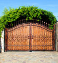 Ornament Forged Big Iron Garden Gate Royalty Free Stock Photo - 10102285