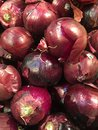 Red Onions Stock Photo - 101033970
