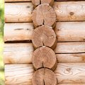 Wooden Wall With Log Stock Images - 101047424