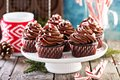 Christmas Chocolate Peppermint Cupcakes Royalty Free Stock Photo - 101118455