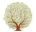 Old Tree Vector Stock Photography - 101125162