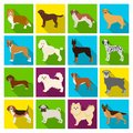 Dog, Pooch, Breed, And Other Web Icon In Flat Style.Dalmatian, Shepherd, Terrier, Icons In Set Collection. Stock Image - 101203121