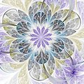 Abstract Fractal Flower Stock Photos - 101215533