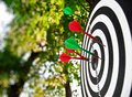 Target With The Thrust Darts Royalty Free Stock Photos - 10137818