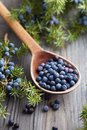Wooden Spoon With Seeds Of Juniper. Royalty Free Stock Image - 101334866