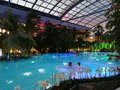 Therme Bucharest, Palm Zone In The Night Royalty Free Stock Photography - 101338217