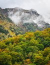 Mountain Scenery At Autumn In Japan Royalty Free Stock Image - 101488136
