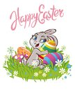 Easter Bunny Rabbit On The Meadow With Easter Eggs Chocolate Royalty Free Stock Images - 101655409